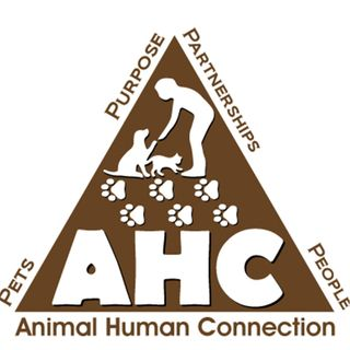 Animal/Human Connection