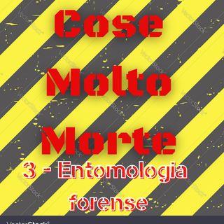 181 - Cose Molto Morte. Entomologia Forense