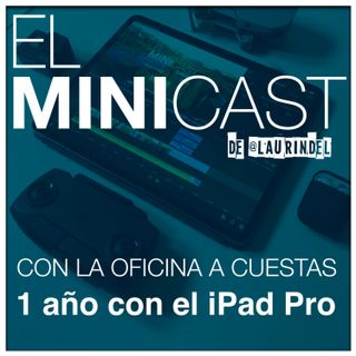 Haciendo Oficina - 1 Año con el iPad Pro.