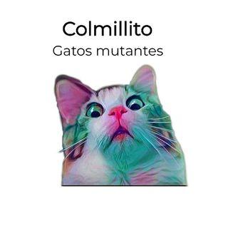 Colmillito