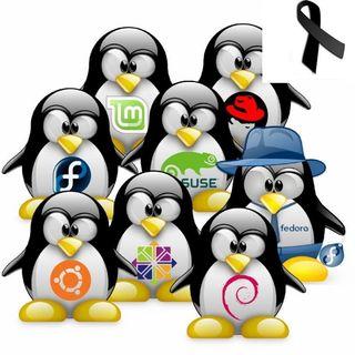 #48 Resumen 2019 y expectativas 2020 en GNU/Linux y FLOSS