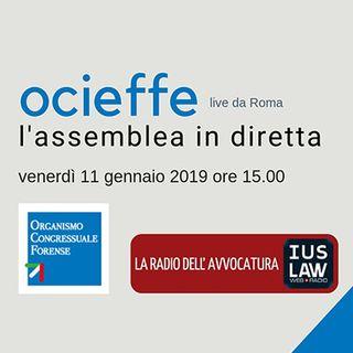 Assemblea OCF 11-12 gennaio 2019 - Venerdì 11 gennaio 2019