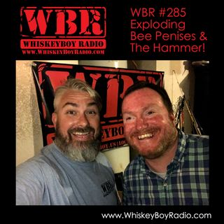 WBR #285 - Exploding Bee Penises and The Hammer!