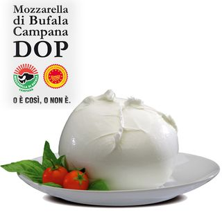Mozzarella di Bufala Campana PDO and maincourses