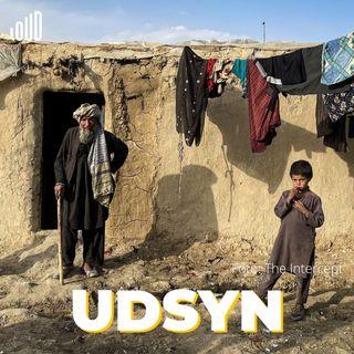 """""""Uforsvarligt at efterlade afghanere i et limbo"""""""
