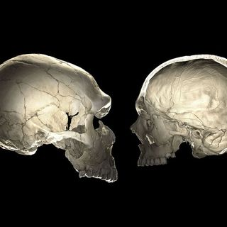 'The Tragedy of the Commons' turns 50, and how Neanderthal DNA could change your skull