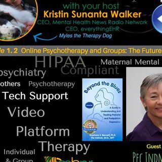 Online Psychotherapy and Groups: Telemental Health with Dr. Pec Indman 1.2