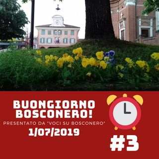 Una settimana Bollente! - Buongiorno Bosconero #3 1 Luglio 2019