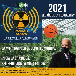 Radiosis Sonora Numero 23
