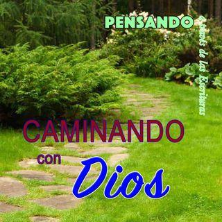 Caminando con Dios (PAE N.22)