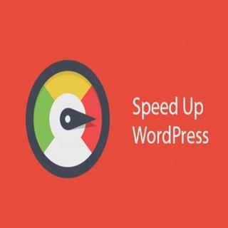 Membahas Update SEO Terbaru dan Cara Mempercepat Website ( Wordpress )
