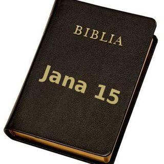 22 - Ewangelia Jana, rozdział 15