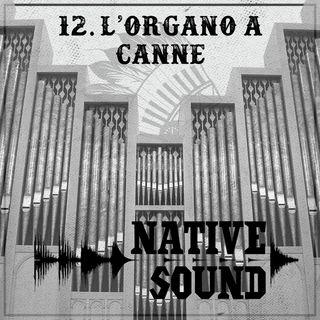 12. L'Organo a canne