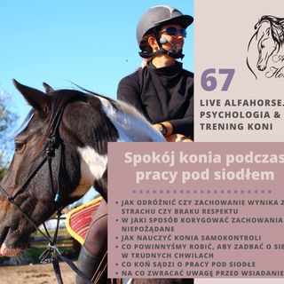 Live 67: Spokój konia w pracy pod siodłem