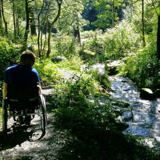 #1 The story from illness to a wheelchair and them adaption