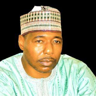 Borno Nigeria : Terrorists Attack Gov's Convoy; kill 8 Policemen, 3 Soldiers