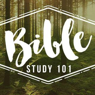 Bible Study Observation-Orginization