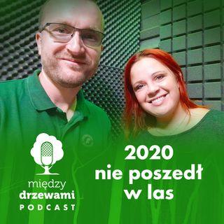 #46 2020 nie poszedł w las! [Michał Wieciech] PODSUMOWANIE ROKU
