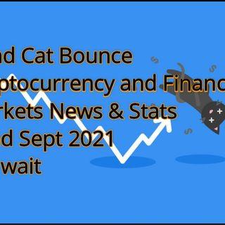 Crypto & Financial Markets 23rd July 2021P