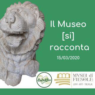 Il Museo (si) racconta: visti di sfuggita - Musei di Fiesole