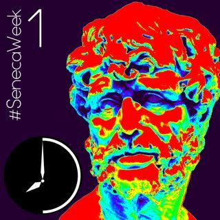 Il Saggio e la Fitta Sassaiola dell'Ingiuria - #SenecaWeek 1