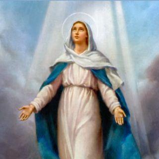 Rosary October 8