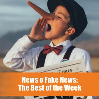 News o fake News? The Best of the Week 2