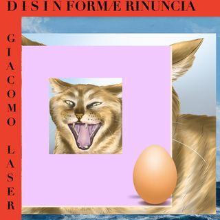 DISINFORMA E RINUNCIA (zattera)