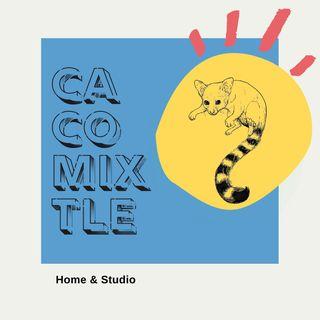 Cacomixtle Home Studio