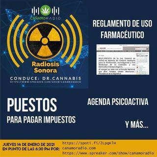 Radiosis Sonora Numero 22