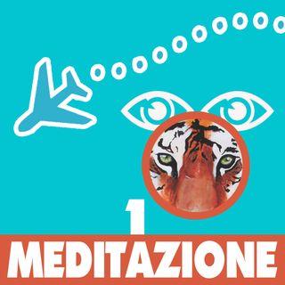 meditazione 1 tigre nella savana