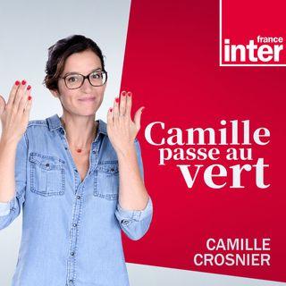 Camille passe au vert du jeudi 17 juin 2021