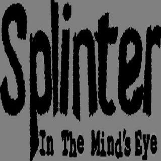 Splinter in the Mind's Eye