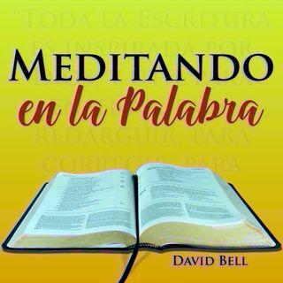 MelP_314-Salmo_19_9