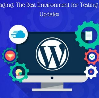 WordPress Staging The Best Environment for Testing Changes and Updates