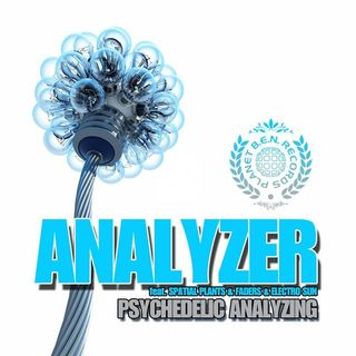 Analyzer - Feel the Beat