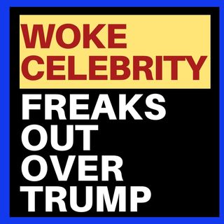 ANOTHER WOKE CELEBRITY FREAKS OUT OVER TRUMP