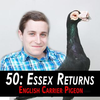 50 - Essex Returns