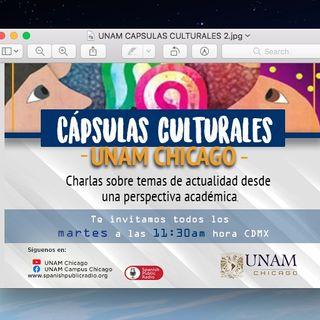 CAPSULAS CULTURALES PROGRAMA DACA