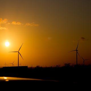 Endangered - Il leader mondiale delle rinnovabili: la Cina