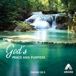 God's Peace and Purpose
