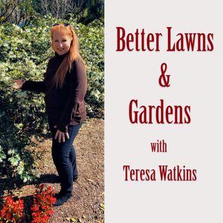Better Lawns & Gardens