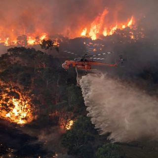 Incendi in Australia: La testimonianza di Mariangela Stagnitti, Presidente del Com.It.Es Queensland