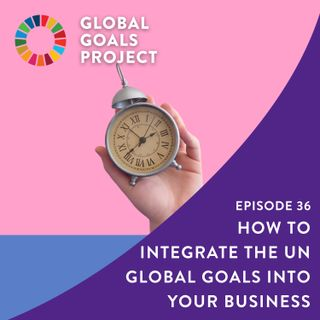 How to Integrate the UN Global Goals Into Your Business [Episode 36]