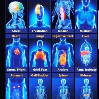 Las emociones y su impacto en el cuerpo fisico
