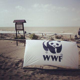 Speciale WWF: Gli habitat dunali
