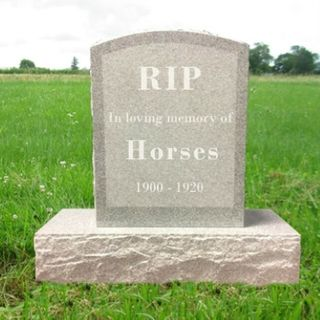 71: In Memoriam of Horses