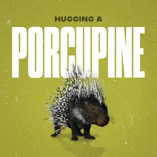 Hugging a Porcupine