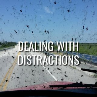 Dealing With Distractions - Morning Manna #3053