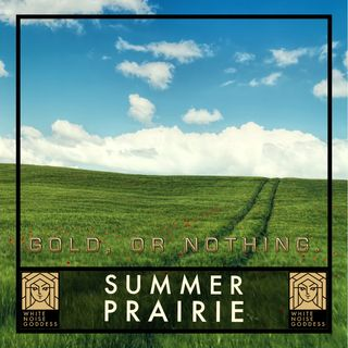 Summer Prairie | White Noise | ASMR & Relaxation